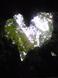 Image2141_35
