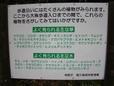 Dsc00714_40