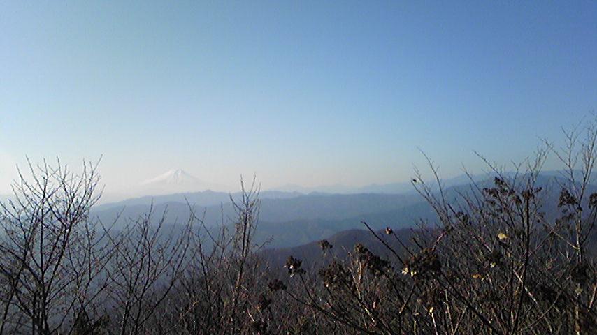 大岳山頂上から。