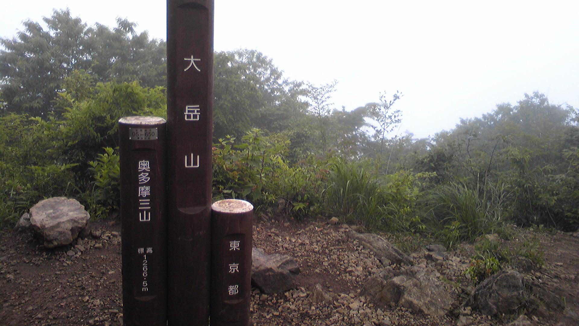 大岳山(モブログ)。